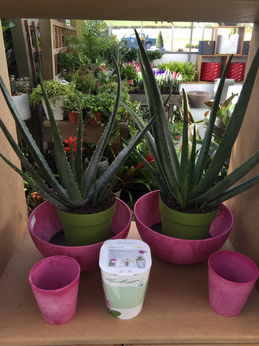 Pink Artstone Containers